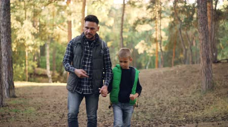 paternal : Adorable boy is walking in forest with his loving father holding his hand, bearded young man is talking and gesturing. Hiking, family and fatherhood concept.