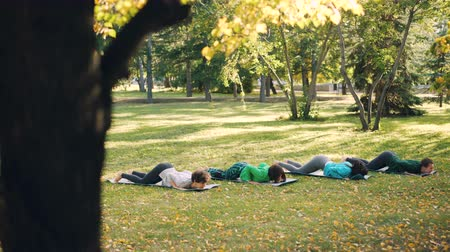 hatha : Active young people females are doing yoga practising sequence of asanas outdoors in park, women in group are wearing trendy sportswear and using mats. Stock Footage