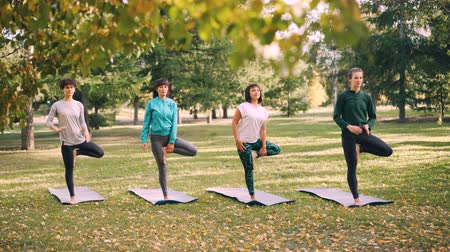 lichaamshouding : Yoga students are doing balancing exercises under guidance of professional instructor during outdoor class in park on autumn day. Women are wearing trendy sportswear.