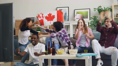 canadense : Canadian youth with flags is watching sports on TV doing high-five and hugging sitting on couch in house. Modern fans, lifestyle and interior concept. Stock Footage