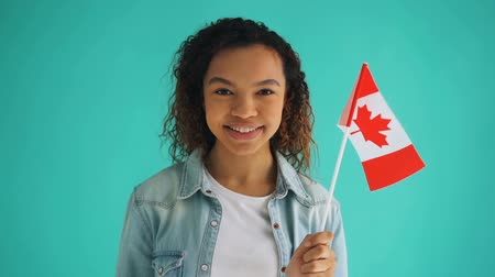 canadian maple leaf : Slow motion of Canadian citizen mixed race girl holding national flag smiling looking at camera standing alone on blue background. Patriotism and citizenship concept.