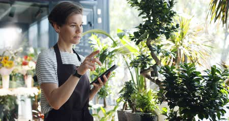 commercial cultivation : Slow motion of female florist in apron using tablet at work counting plants touching screen writing down information. Small business and technology concept. Stock Footage