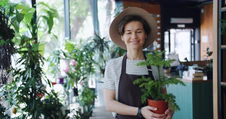 przedsiębiorczość : Portrait of good-looking girl florist holding houseplant standing in flower shop alone smiling looking at camera. Workplace, happy people and nature concept.