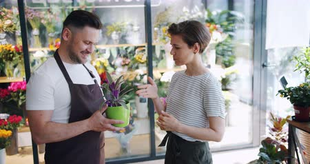houseplant : Male florist in apron is holding green plant and talking to female customer in flower store discussing houseplants. Nature, small business and conversation concept.