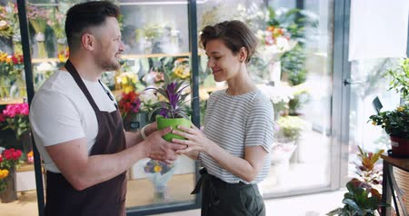 retailing : Slow motion of salesman in apron consulting customer happy girl in flower shop then giving plant to young woman. Small business, people and conversation concept.