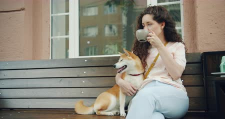 copinho : Attractive girl is drinking tea outdoors in cafe and patting cute shiba inu dog sitting on bench in the street enjoying day out. People, pets and lifestyle concept.