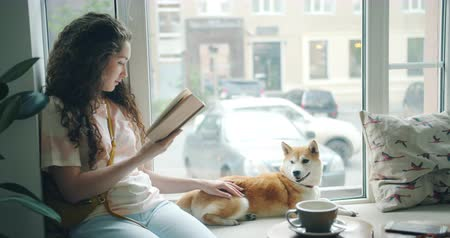 shiba inu : Attractive girl happy dog owner is reading book and stroking pet shiba inu puppy on window sill in cafe. Modern lifestyle, hobby and relaxation concept.