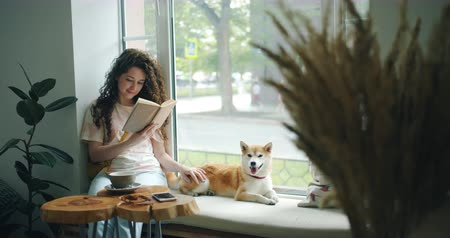 alfabetização : Happy young woman enjoying book and petting dog sitting on window sill in modern cafe. Literature, youth culture and lifestyle, domestic animals concept. Vídeos