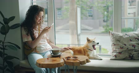 芝 : Cheerful student pretty girl is enjoying social media in modern smartphone sitting on window sill in cafe with dog, cute animal is yawning. People and pets concept.