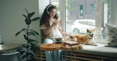 shiba inu : Pretty girl is listening to music with headphones and using smartphone sitting on window sill in cafe with lovely well-bred dog lying near her. Youth and pets concept.