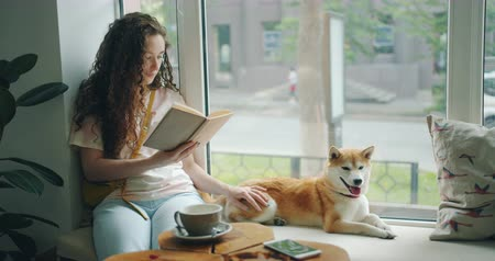 shiba inu : Pretty girl is reading book and stroking shiba inu puppy relaxing on window sill in cafe enjoying leisure time. Hobby, youth and happiness concept.