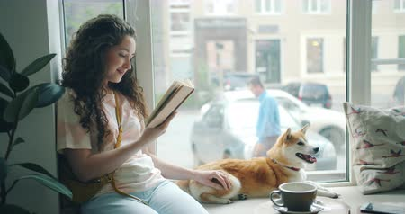 alfabetização : Pretty young lady is reading interesting novel in cafe on window sill and stroking cute pet dog shiba inu breed. Happy youth and domestic animals concept.