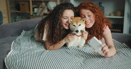 shiba inu : Joyful sisters attractive girls are taking selfie with adorable doggy using smartphone camera lying on couch at home smiling having fun. People and self portrait concept. Stock Footage