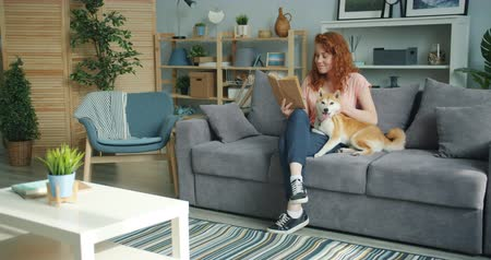 shiba inu : Attractive young lady enjoying interesting book and stroking cute dog at home sitting on couch smiling. Modern youth, lifestyle and interior concept.