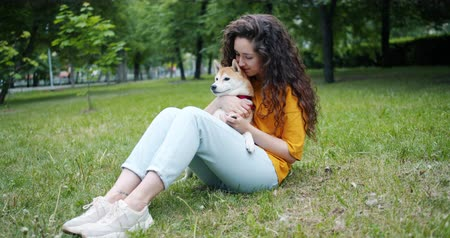 shiba inu : Attractive brunette stroking beautiful shiba inu dog sitting on grass in park on warm summer day. Human and animal friendship, nature and youth concept.