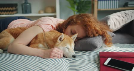 shiba inu : Attractive young woman and cute shiba inu dog are sleeping together at home on bed hugging enjoying relaxation. Humans and animals friendship concept.