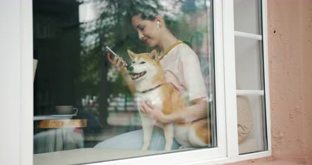 shiba inu : Student attractive girl is using smartphone listening to music in wireless earphones and stroking well-bred dog sitting on window sill in cafe. Relaxation and animals concept.