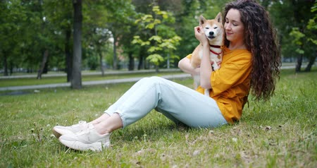 shiba inu : Pretty young woman is kissing dogs muzzle and smiling sitting on grass in park enjoying friendship with animal. People, affection and cute pets concept. Stock Footage