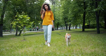 shiba inu : Pretty girl is walking beautiful shiba inu dog in green park and using smartphone outdoors touching screen then looking around smiling. Gadgets and pets concept.