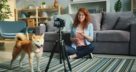 shiba inu : Slow motion of joyful blogger female dog owner recording video using modern camera on tripod sitting on floor in studio apartment talking and gesturing.