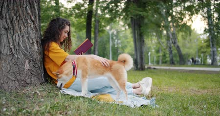 literatuur : Slow motion of female student reading interesting book sitting on plaid while her shiba inu dog eating grass in park on lawn. People, nature and animals concept. Stockvideo