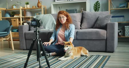 shiba inu : Cute teenager popular blogger is recording videoblog sitting on floor at home, stroking lovely pet dog and talking to subscribers. Social media and people concept.