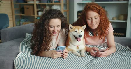 shiba inu : Slow motion of curly-haired young women sisters talking using smartphones and caressing pedigree dog lying on bed in apartment. People and gadgets concept. Stock Footage