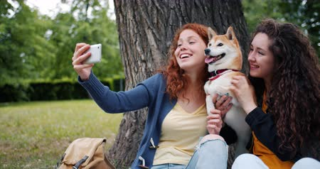 shiba inu : Happy girls friends are taking selfie in park with cute shiba inu dog using smartphone camera sitting on lawn having fun. Technology and youth concept.