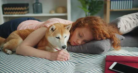 bağlılık : Beautiful young lady is sleeping on couch at home hugging adorable puppy lying together resting. Youth lifestyle, happy people and animals concept.