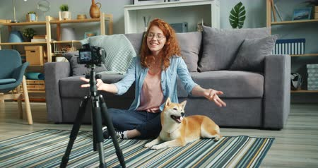 shiba inu : Slow motion of happy girl vlogger recording video with adorable dog at home sitting on floor talking stroking cute pet. Social media and blogging concept. Stock Footage