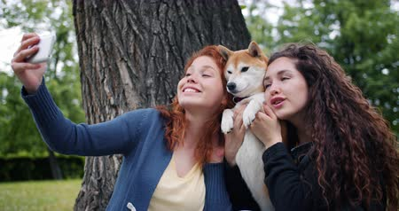 shiba inu : Loving dog owners attractive curly-haired girls are taking selfie with pet in park using smartphone camera hugging and strokign animal. People and emotions concept.