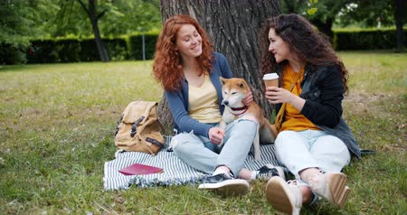 芝 : Beautiful young sisters talking and stroking dog sitting on lawn in park enjoying summer and friendship. Young woman holding carton glass of to go coffee.