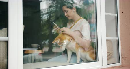 davanzale : Lady loving pet owner is listening to music with wireless earphones using smartphone and kissing dog shiba inu breed sitting on window sill in cafe.