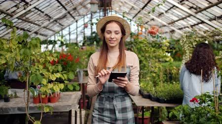 inventario : Slow motion of cheerful young woman in hat and apron using tablet in greenhouse counting plants doing inventory. Modern technology and farming business concept.
