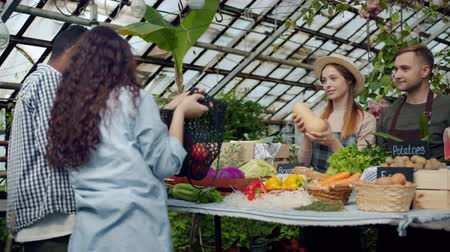 потребитель : Slow motion of friendly salespeople selling organic vegetables and herbs to buyers in farm market in greenhouse. Consumerism, business and shopping concept.