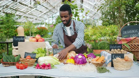 retailing : African American guy farmer in apron is putting organic food vegetables bread fruit on table in farm market getting ready for sale. People and occupation concept.