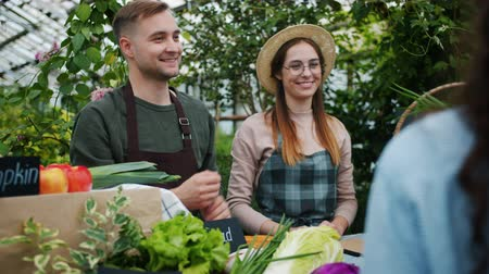 retailing : Man and woman salespeople are giving pack of organic food to customers taking money talking smiling in farm market in spacious greenhouse. Business and farming concept. Stock Footage