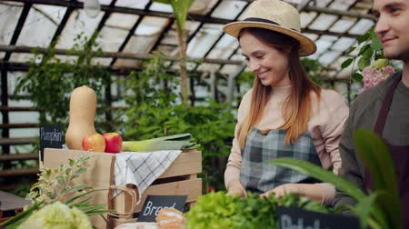 retailing : Friendly saleswoman in apron and hat is packing organic food vegetables during farm sale in greenhouse. Small business, working youth and shopping concept. Stock Footage