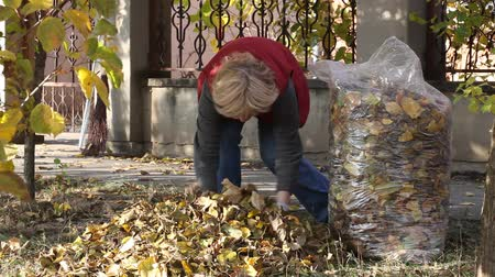 otthonos : Caucasian woman collecting leaves