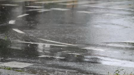dehet : Rain at street drops falling to puddle and asphalt