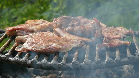 bbq grill : Barbecue preparing meat  on classical way using charcoal Stock Footage