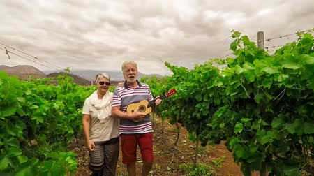 winnica : couple of senior people on gray hair playing ukulele in vineyard