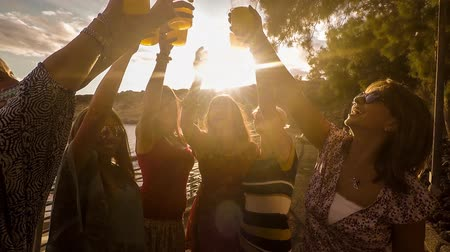iluminado para trás : seven beautiful friends women celebrate the summer and the sunset Stock Footage