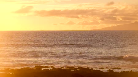 maravilhoso : wonderful sunset over the ocean with surfer swimming Stock Footage