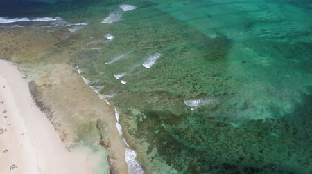 microstock : aerial view of beach and reef, corralejo fuerteventura canary islands Stock Footage