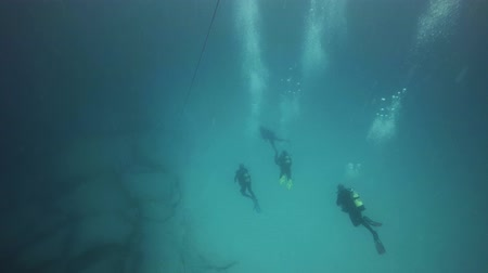 divas : three divers in immersion, fuerteventura canari islands