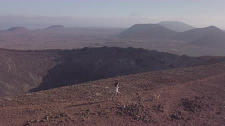 kanárské ostrovy : girl with her dog runs on the top of the volcano
