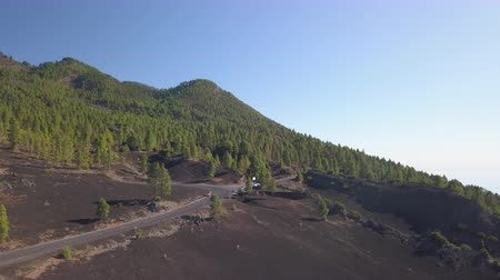 astro : volcanic landscape and pine forest Stock Footage
