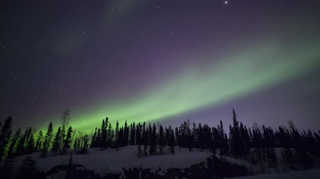northern nature : 4K Timelapse footage - Aurora borealis Stock Footage