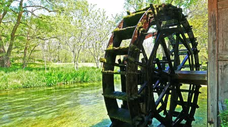 Spring creek waterwheel